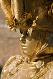 Creative Venice Carnical Costume Royalty Free Stock Image