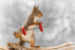 Creative weight lifter Stock Photography