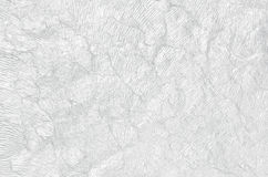 Creative white paper texture. Stock Photo