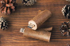 Creative wooden usb stick like a branch Royalty Free Stock Photo