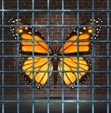 Creatividad atrapada Foto de archivo libre de regalías
