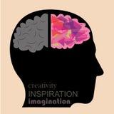 Creatividad y cerebro lógico Imágenes de archivo libres de regalías