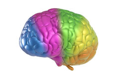 Creativity brain. Creativity concept with 3d rendering colorful brain Stock Photos