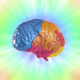 Creativity brain. Creativity concept with 3d rendering colorful brain Royalty Free Stock Photography
