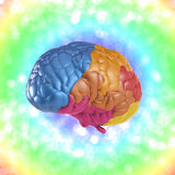 Creativity brain. Creativity concept with 3d rendering colorful brain Stock Photo