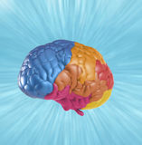 Creativity brain. Creativity concept with 3d rendering colorful brain Stock Image