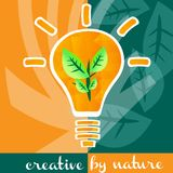 Creativity light bulb concept Royalty Free Stock Photos