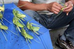 Creatore della tramoggia dell'erba di Hong Kong Immagini Stock Libere da Diritti