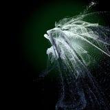 Creatura del mare profondo Fotografie Stock