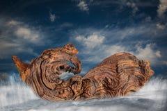 Creatura mitica in barca sul mare Fotografie Stock