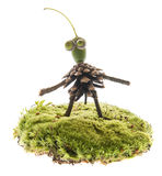Creature made from natural materials Royalty Free Stock Images