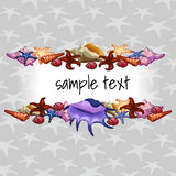 Creatures of sea clams on a background with star Royalty Free Stock Images
