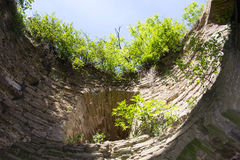 Crecido demasiado con arbustos y una fortaleza de piedra vieja de Koporye Fotos de archivo libres de regalías