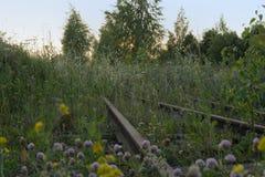 Crecido demasiado con la hierba el ferrocarril oxidado viejo Imágenes de archivo libres de regalías