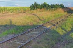 Crecido demasiado con la hierba, las pistas ferroviarias abandonadas corren con t Imagenes de archivo