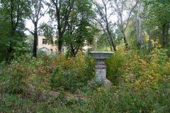 Crecido demasiado por ruinas de los árboles de la mansión Imagen de archivo libre de regalías