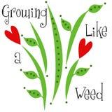 Crecimiento como un diseño de los niños de Weed Imagen de archivo libre de regalías