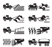 Crecimiento de cosecha y cosecha de la agricultura ilustración del vector