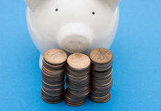 Crecimiento de los ahorros Imagen de archivo