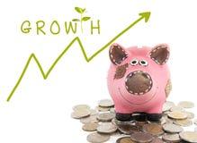 Crecimiento de su concepto del dinero Imagen de archivo