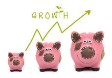 Crecimiento de su concepto del dinero Imagen de archivo libre de regalías