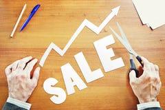 Crecimiento de ventas Imagen de archivo libre de regalías