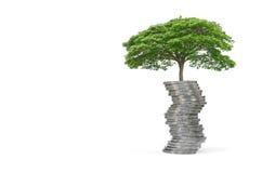 crecimiento del árbol del concepto en el dinero para su ahorro fotografía de archivo
