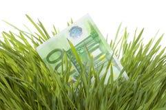 Crecimiento euro Foto de archivo libre de regalías