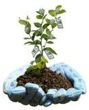 Crecimiento financiero Imagen de archivo libre de regalías