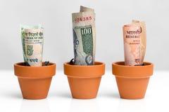 Crecimiento indio del concepto del dinero Fotos de archivo libres de regalías