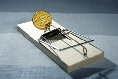 Credit money is a mouse trap Royalty Free Stock Photo