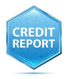 Credit Report crystal blue hexagon button vector illustration