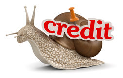 Credit Snail (clipping path included) Royalty Free Stock Photos
