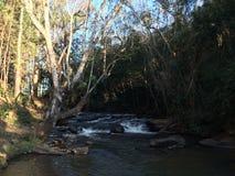 creek fotografia de stock