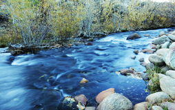 Creek Stock Photography