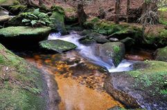 Creek. Small cascade in the Bohemian Forest royalty free stock images