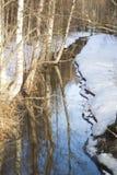 creek Foto de Stock
