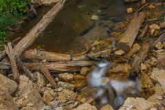 creek Imagens de Stock Royalty Free