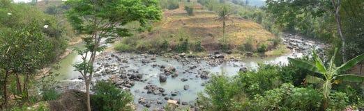 Creek2 Стоковая Фотография RF