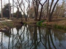 creek royaltyfri foto