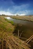 creek Fotografia Stock