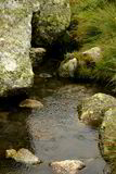 creek Royaltyfria Bilder