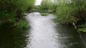 creek arkivfilmer