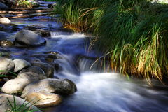 Creek. Beautiful creek in sedona, arizona Royalty Free Stock Images