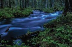 The Creek Стоковое Изображение RF