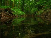 A creek Stock Images
