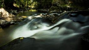 creek Imagem de Stock