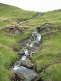 A creek accompanied by purple heather running down green Hills at Glenshee Valley, Grampian Mountains, Scotland Royalty Free Stock Image