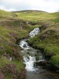 A creek accompanied by purple heather running down green Hills at Glenshee Valley, Grampian Mountains, Scotland Stock Photo