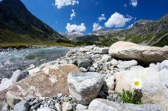 Creek in the alps Stock Image